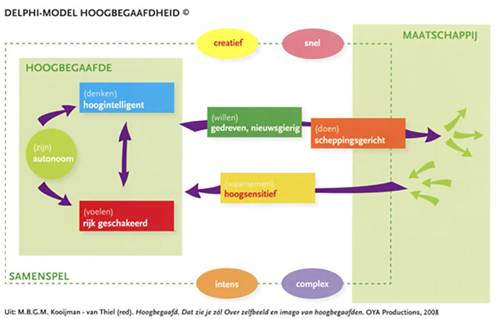 Delphi-model hoogbegaafdheid